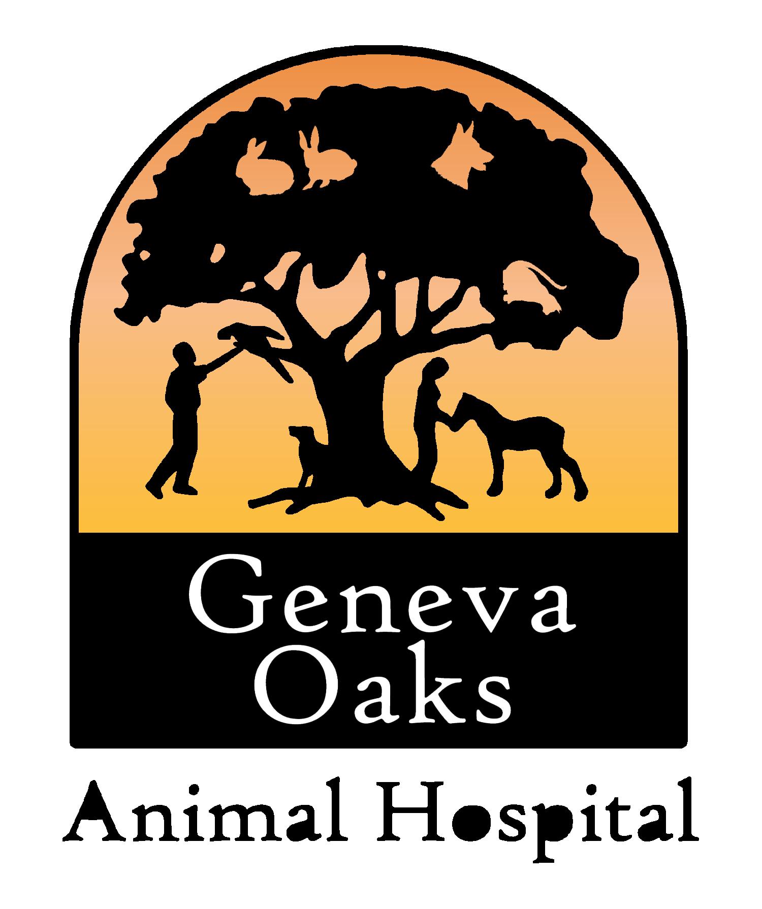 Veterinarian in Geneva, FL | Geneva Oaks Animal Hospital